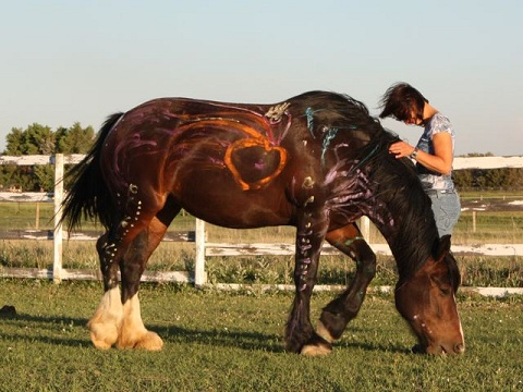 Kathy Pike Shamanic Journey Painted Horse
