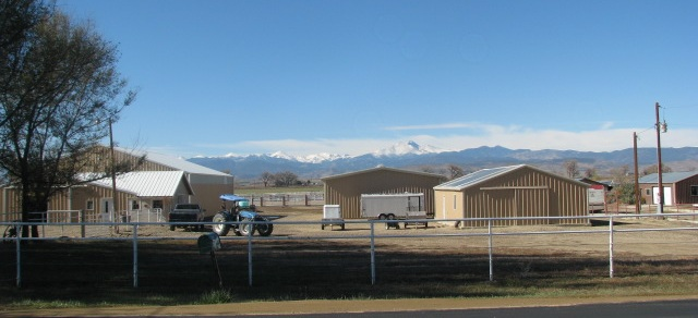 Coaching With Horses in Longmont, Colorado