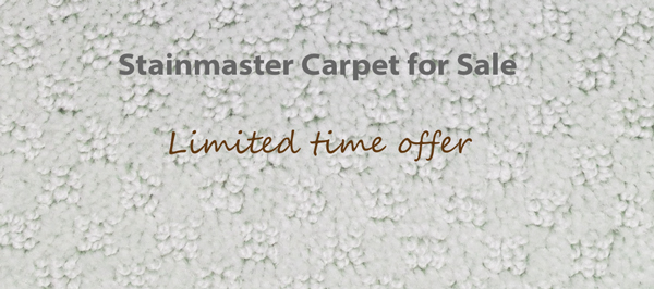 Stainmaster Carpet For Toronto Markham