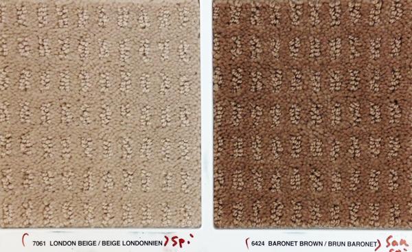 stainmaster carpet 3
