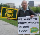 CT GMO Bill