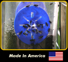 Combo Pack for Wasp/Hornet and Fly Traps