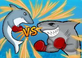 Dolphin vs. Shark