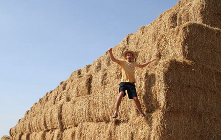 man atop large straw bales