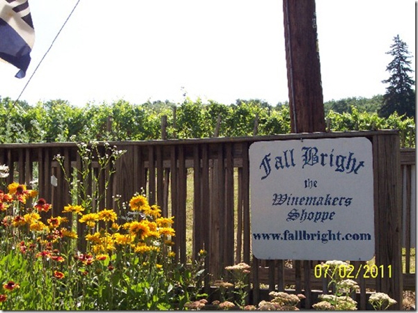 fallbright shop vineyard in background
