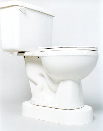 Toilet Safety