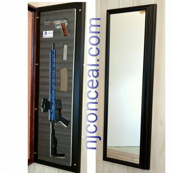 1 Surface Mounted Mirror 16x52 N J Concealment Furniture
