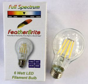 Bulbs and Accessories